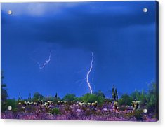 Colorful Desert Storm Acrylic Print by James BO  Insogna