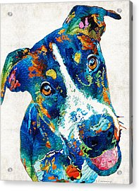 Colorful Dog Art - Happy Go Lucky - By Sharon Cummings Acrylic Print by Sharon Cummings