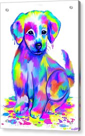 Colorful Painted Puppy Acrylic Print by Nick Gustafson
