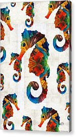 Colorful Seahorse Collage Art By Sharon Cummings Acrylic Print by Sharon Cummings