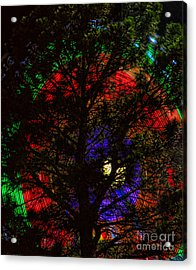 Colorful Tree Acrylic Print by James BO  Insogna
