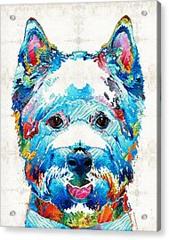 Colorful West Highland Terrier Dog Art Sharon Cummings Acrylic Print by Sharon Cummings