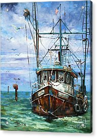 Coming Home Acrylic Print by Dianne Parks