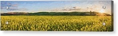 Concede The Day II Acrylic Print by Jon Glaser