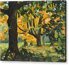 Concord Fall Trees Acrylic Print by Claire Gagnon