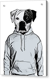 Cool Dog Acrylic Print by Nicklas Gustafsson