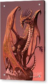 Copper Dragon Acrylic Print by Stanley Morrison