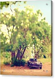 Corvette Summer Acrylic Print by Humboldt Street