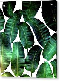 Cosmic Banana Leaves Acrylic Print by Uma Gokhale