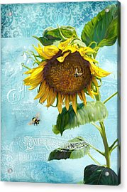 Cottage Garden Sunflower - Everlastings Seeds N Flowers Acrylic Print by Audrey Jeanne Roberts