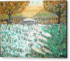 Cotton Pickers Acrylic Print by BJ Abrams