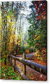 Country Rain Acrylic Print by Debra and Dave Vanderlaan