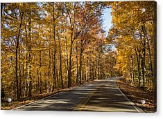 Country Road Acrylic Print by Andrea Kappler