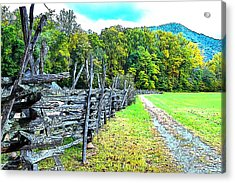 Country Roads Acrylic Print by James Fowler