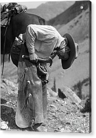 Cowboy Shoeing A Horse, C.1920-30s Acrylic Print by H. Armstrong Roberts/ClassicStock