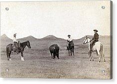 Cowboys, Roping A Buffalo Acrylic Print by Everett