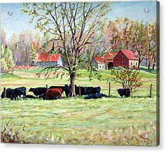 Cows Grazing In One Field  Acrylic Print by Richard T Pranke
