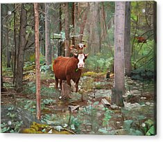 Cows In The Woods Acrylic Print by Joshua Martin