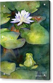 Coy Koi Acrylic Print by Amy Kirkpatrick