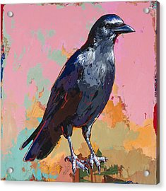 Crow #3 Acrylic Print by David Palmer