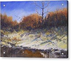 Crows Along The Cottonwood Acrylic Print by Douglas Trowbridge