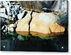 Crushed Acrylic Print by Donna Blackhall
