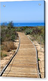 Crystal Cove State Park Wooden Walkway Acrylic Print by Paul Velgos
