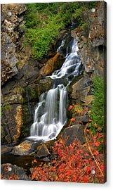 Crystal Falls Acrylic Print by Marty Koch
