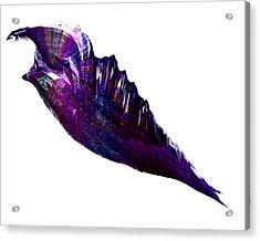 Crystal  Acrylic Print by Mark Taylor