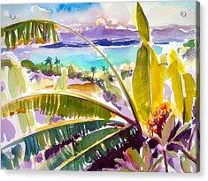 Culebra And Bananas Acrylic Print by Barbara Richert