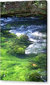 Current River 8 Acrylic Print by Marty Koch