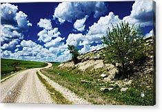Curving Gravel Road Acrylic Print by Eric Benjamin