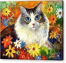 Cute Ragdoll Tubby Cat In Flowers Acrylic Print by Svetlana Novikova