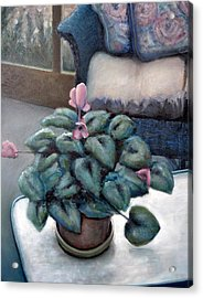 Cyclamen And Wicker Acrylic Print by Michelle Calkins