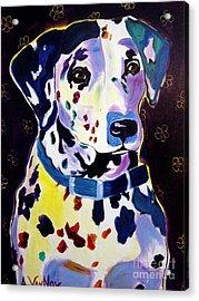 Dalmatian - Dottie Acrylic Print by Alicia VanNoy Call