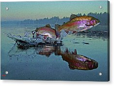 Dance Of The Trout Acrylic Print by Brian Pelkey