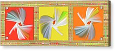 Dancing Flower Trio Acrylic Print by Ben and Raisa Gertsberg