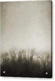 Dark Foggy Wood Acrylic Print by Scott Norris