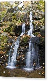 Dark Hollow Falls Shenandoah National Park Acrylic Print by Pierre Leclerc Photography