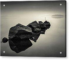 Dawn Flight Acrylic Print by Dave Bowman