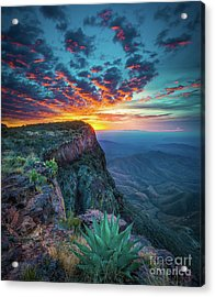 Dawn In The Chisos Acrylic Print by Inge Johnsson