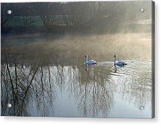 Dawn Patrol Acrylic Print by Rod Johnson