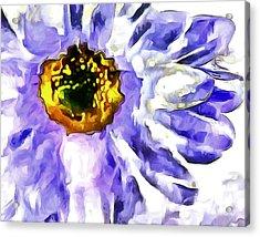 Daydream Daisy Acrylic Print by Krissy Katsimbras