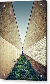 Dead End Alley Acrylic Print by Scott Norris