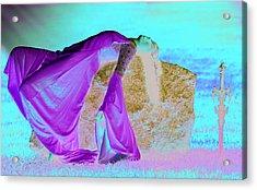 Death Of An Elf Acrylic Print by Dean Bertoncelj