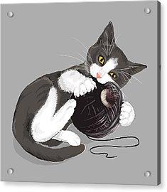 Death Star Kitty Acrylic Print by Olga Shvartsur