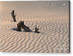 Death Valley Morning Acrylic Print by Sandra Bronstein