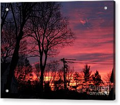 December Morning Acrylic Print by Gina Sullivan