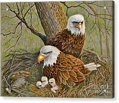 Decorah Eagle Family Acrylic Print by Marilyn Smith