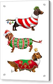 Decorative Dachshunds Acrylic Print by Michelle Guillot